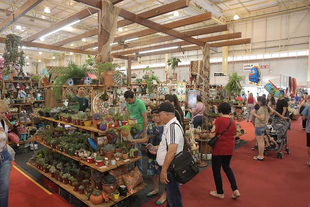 5ac142b0e6 81ª Festa das Flores de Joinville inicia comercialização de estandes